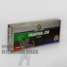 Тестостерон енантат | Enanthal 250 Malay Tiger - цена за 10 ампули