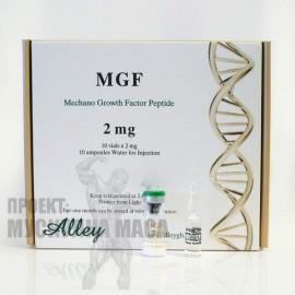 MGF пептид - Механичен фактор на растежа